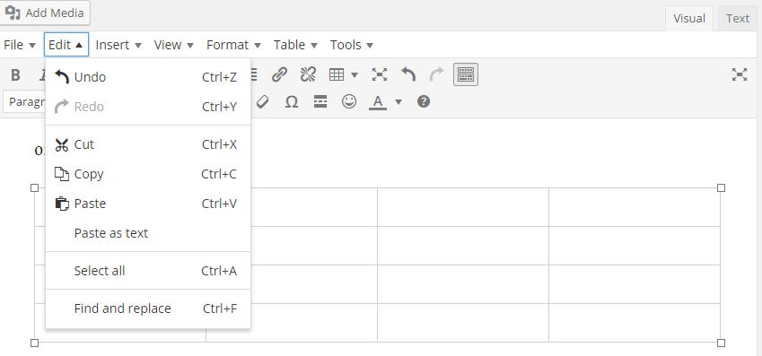 TinyMCE Editor - Edit