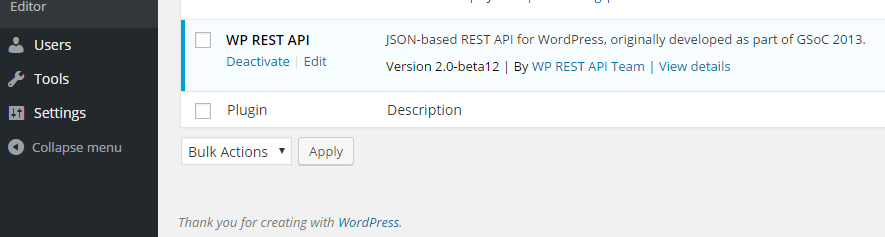 WP REST API Activation