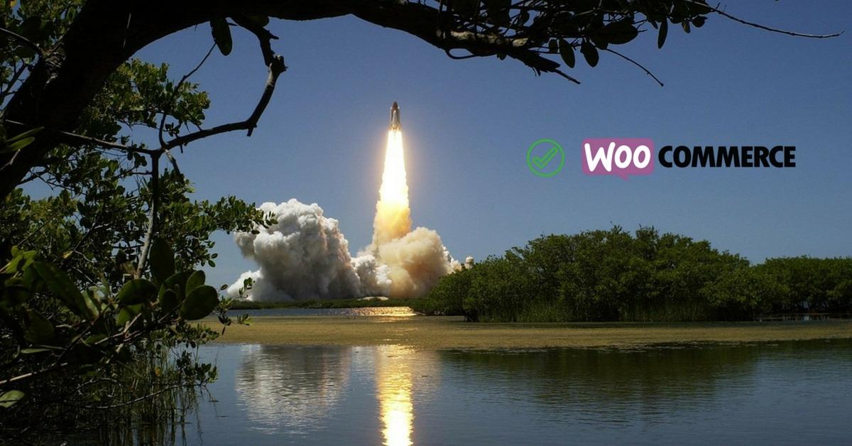 speedup_woocommerce